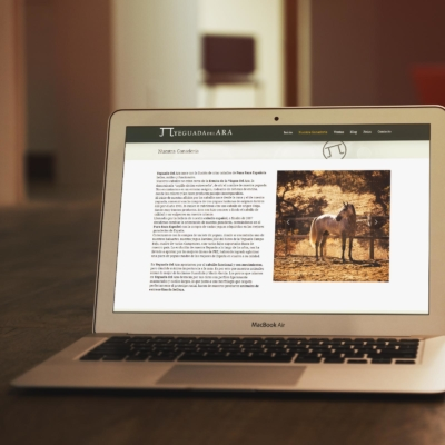 Diseño Web Yeguada del Ara