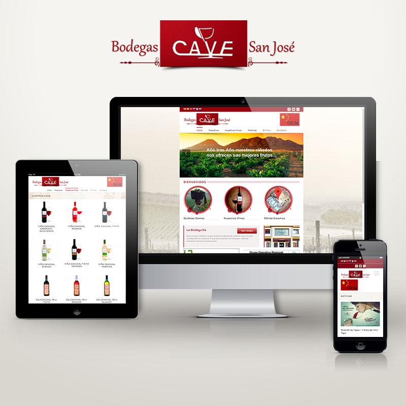 Diseño Web Bodegas CAVE San José