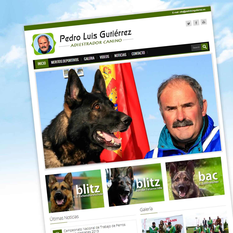Diseño Web Pedro Luis Gutiérrez