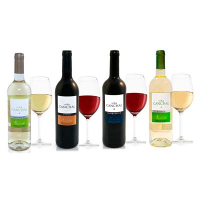 Fotografía MundoRed - vinos